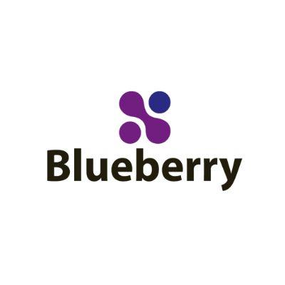 blueberry-logo